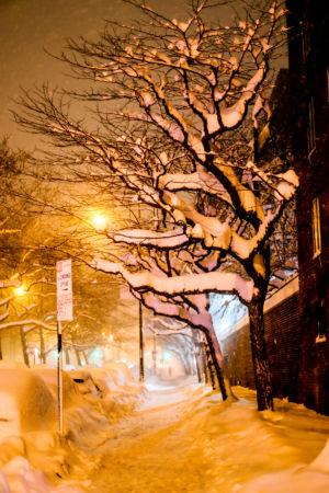winterchaos-nyc-jan2016-9