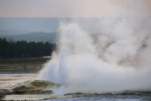 yellowstone1-aug2015-30