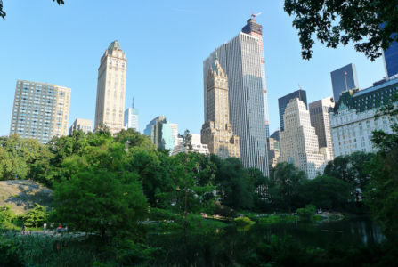 Central-Park-aug2014