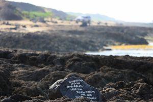 Hawaii-oahu14