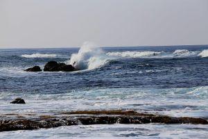 Hawaii-oahu16