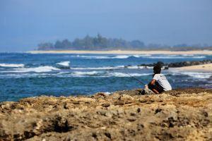 Hawaii-oahu18