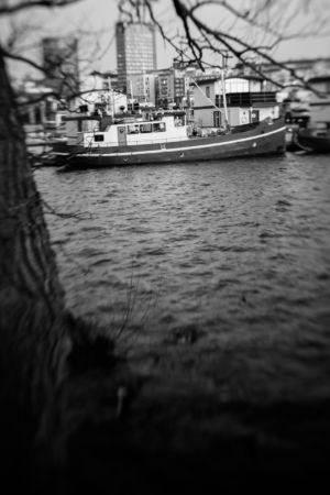 lensbaby-Pampas-Marina-mars2020-3406