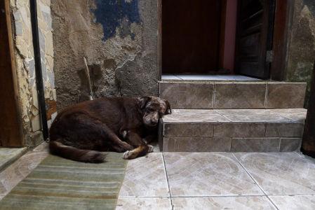 Rio-de-janeiro-20121020270.brazil-2012G