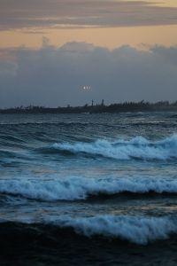 Water-landing-kauai
