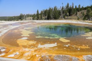 yellowstone1-aug2015-12