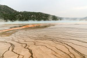 yellowstone1-aug2015-18