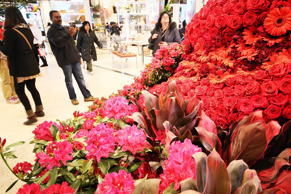 Macy's Flower Show pågår en bit in i april.