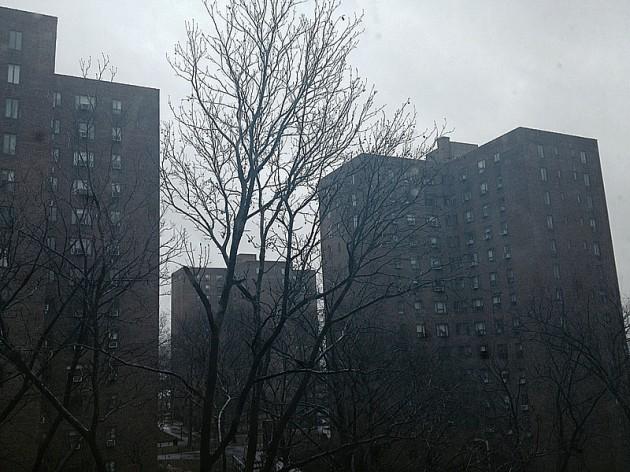 Den kompakt grå himlen över New York denna lördagsförmiddag.