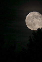 roslagen-moon-april2019-1400-1-170x250.jpg